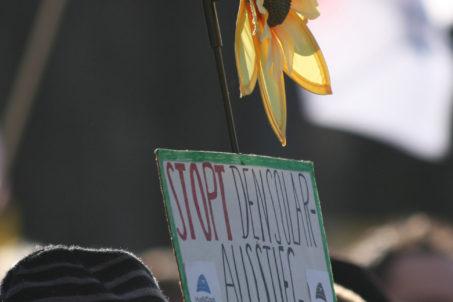 rp_sunflower-protest-near-brandenburg-gate.jpg