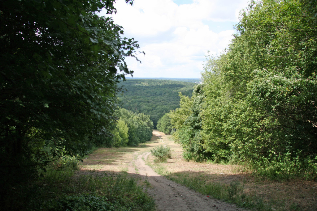 The view back down the mountain after leaving the NSA Listening Station at Teufelberg