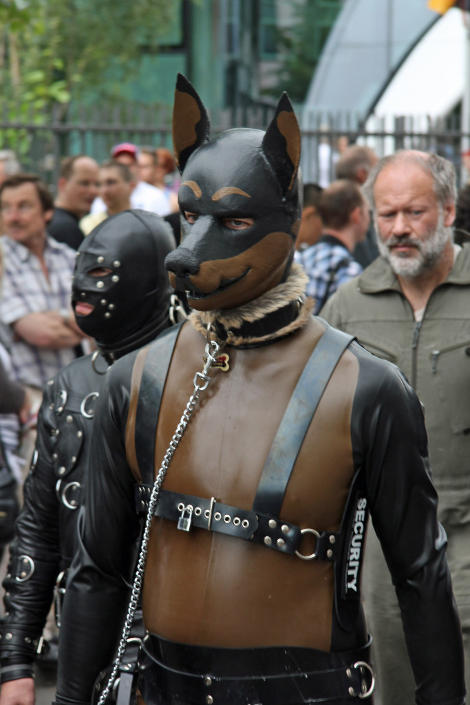 Dog Day Afternoon: A reveller in a dog collar, mask and leather suit at the Christopher Street Day Parade (CSD) in Berlin
