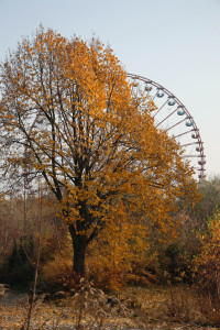 The Ferris Wheel (Riesenrad) and Autumn colours at Spreepark Plänterwald, an abandoned Theme Park in Berlin