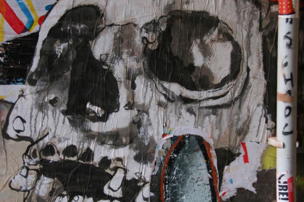 Skull: Street Art by Unknown Artist in Berlin