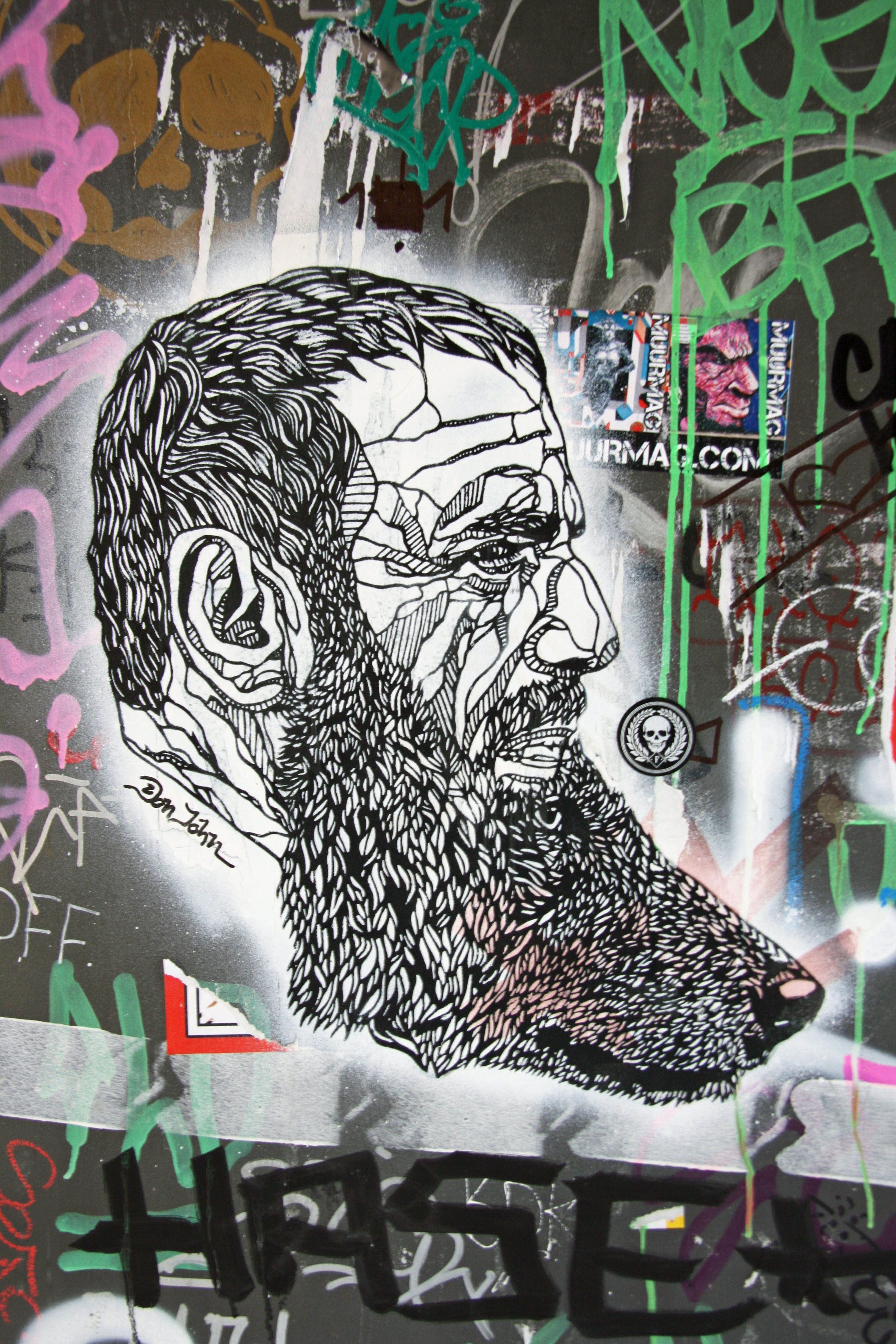 Wolf Beard: Street Art by Don John in Berlin