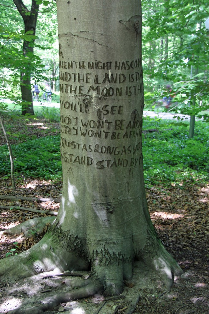 The lyrics to Ben E King's Stand By Me carved into the trunk of a tree in the Tiergarten in Berlin