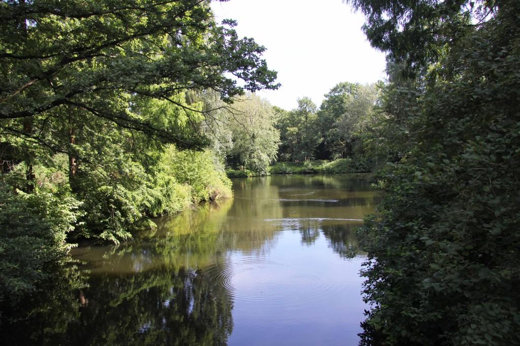 A tranquil spot in the Tiergarten in Berlin
