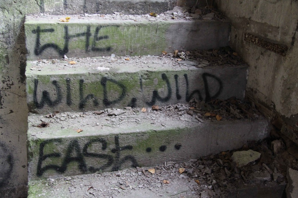 The Wild Wild East: Graffiti by Unknown Artist at Papierfabrik Wolfswinkel near Berlin