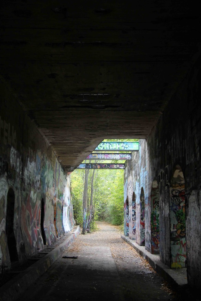 The legal graffiti spraying area in a tunnel at Natur-Park Schöneberger Südgelände in Berlin
