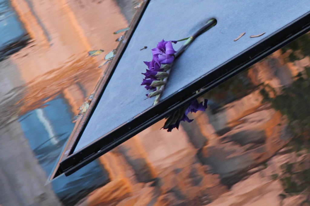 A flower on the concrete plinth at the centre of the Memorial to the Sinti and Roma of Europe Murdered Under National Socialism in Berlin