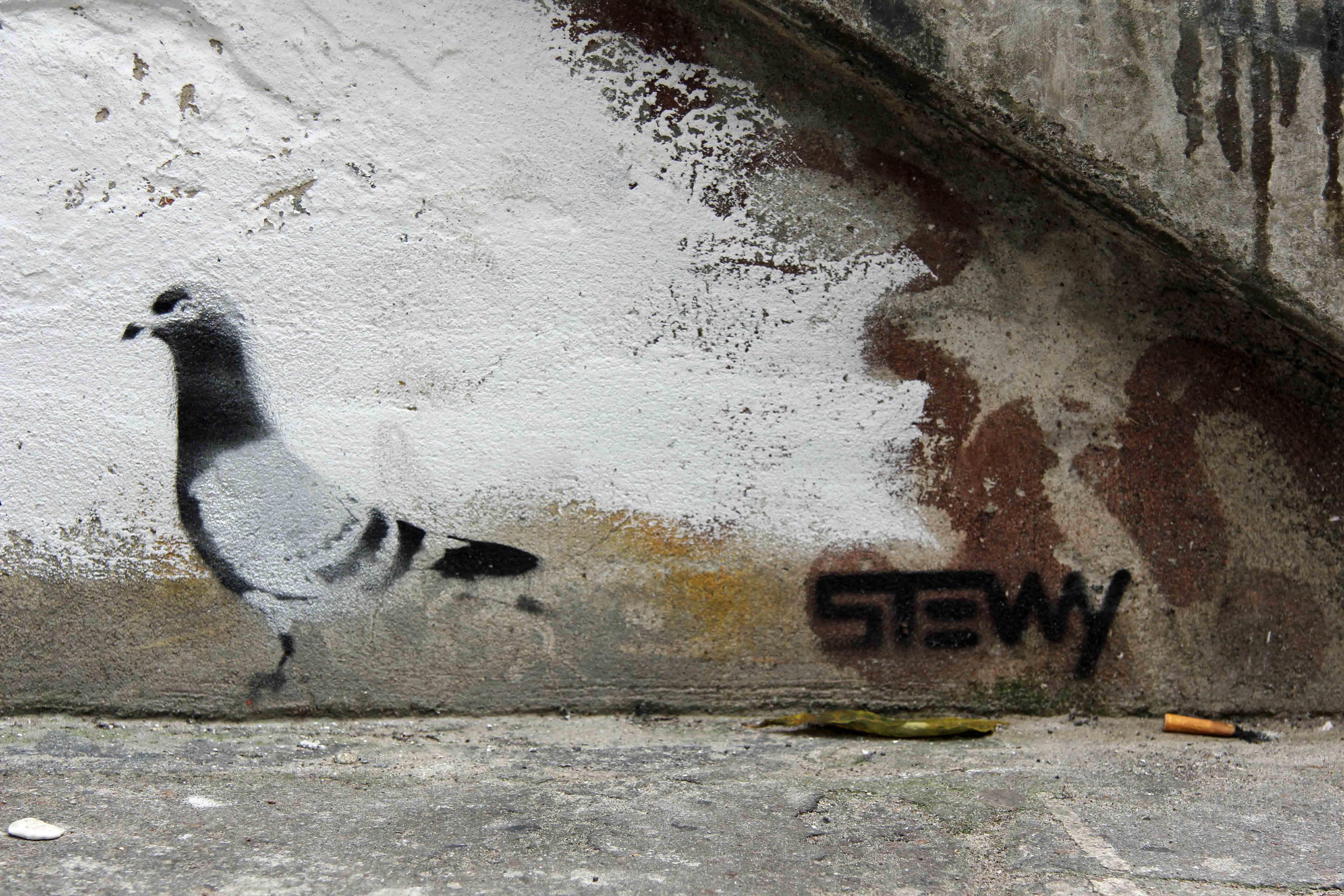 Pigeon - Street Art by Stewy in Berlin