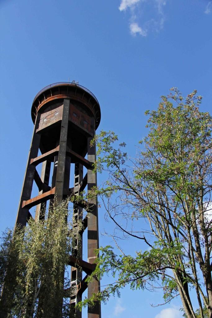 A water tower through trees at Natur-Park Schöneberger Südgelände in Berlin