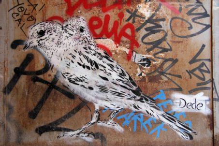rp_dede-siamese-birds-1024x682.jpg