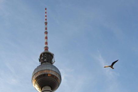 The Fernsehturm in Berlin with a bird hovering nearby