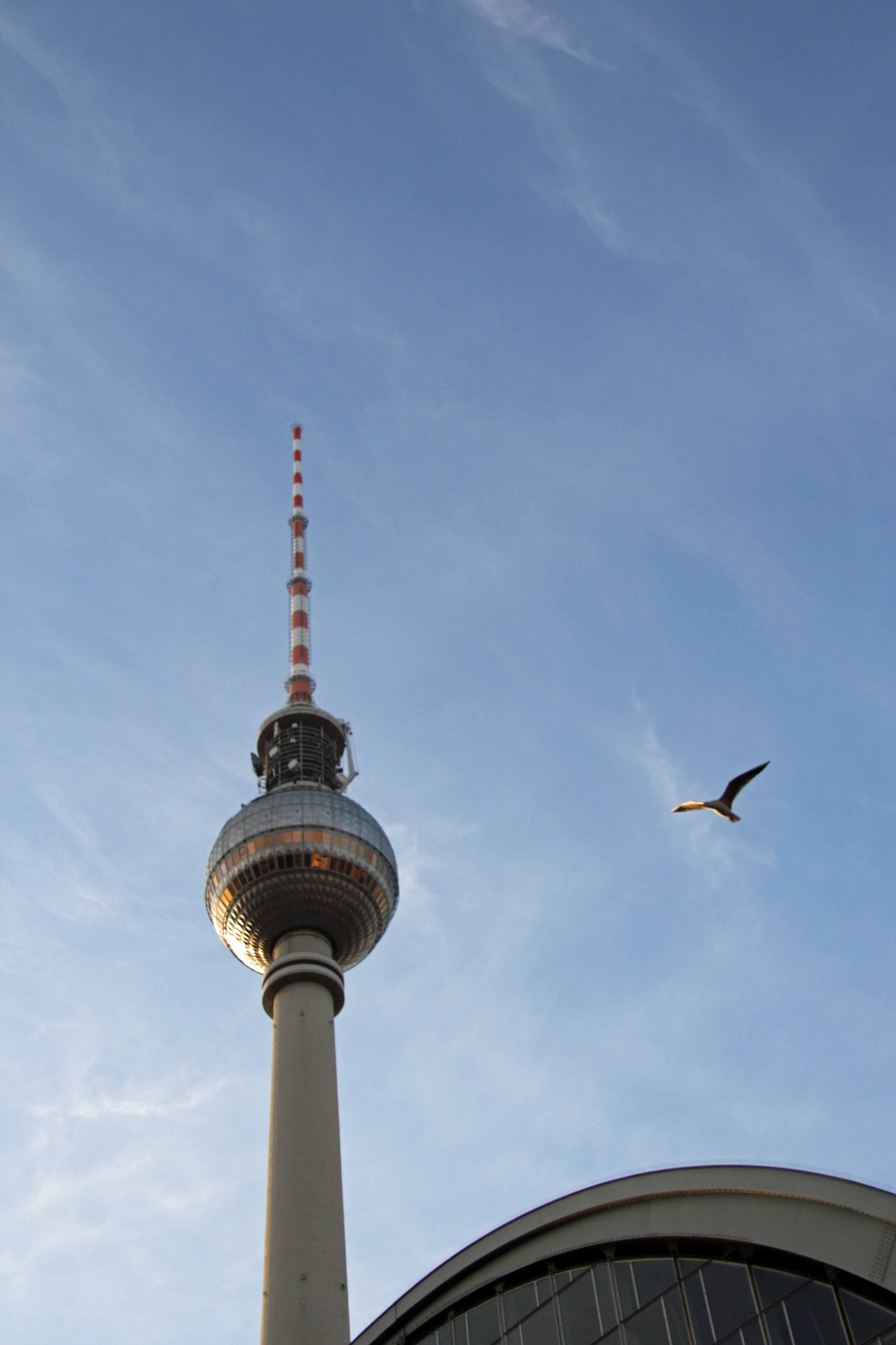The Fernsehturm (TV Tower) in Berlin with a bird hovering nearby