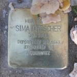 Stolpersteine Berlin 174 (3): In memory of Sima Drescher (Gervinusstrasse)