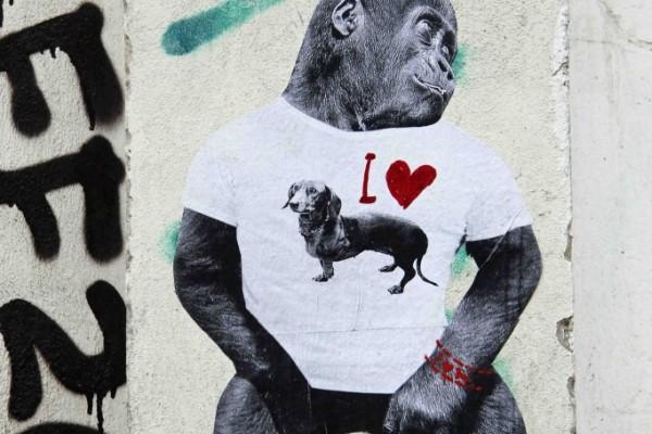 rp_Dog-Lover-682x1024.jpg