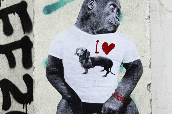 rp_Dog-Lover-683x1024.jpg