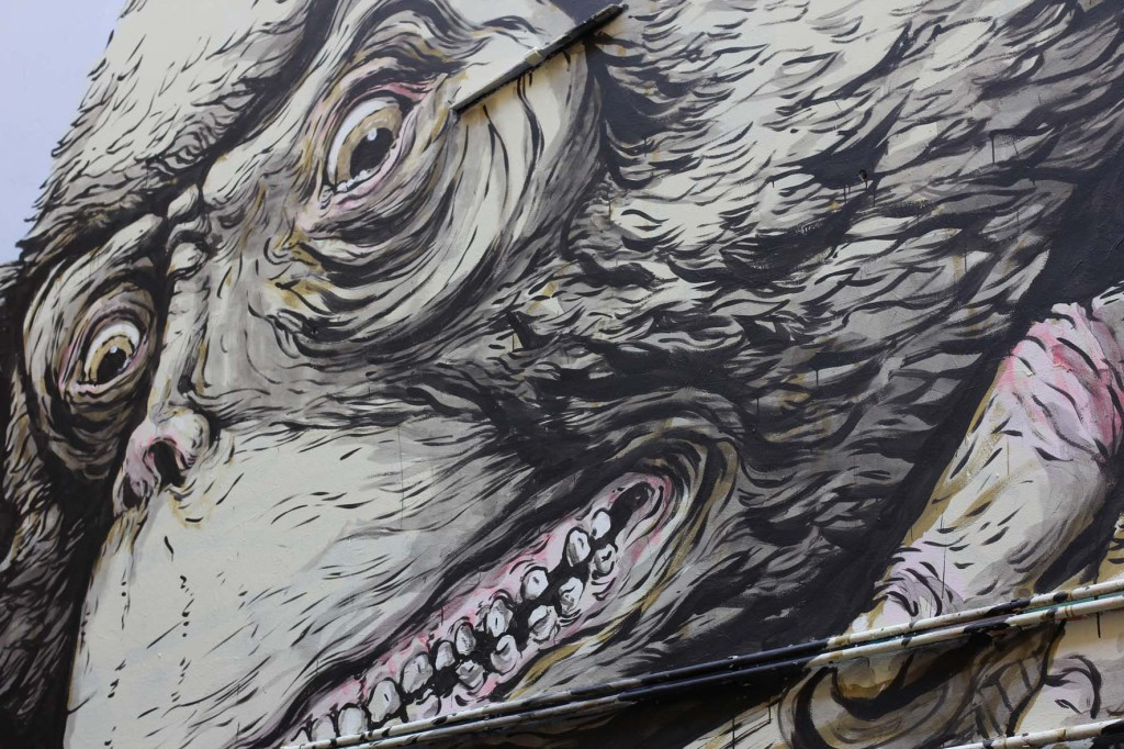 Ape Face Close Up - Street Art by Ericailcane in Berlin