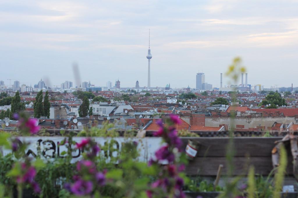 Flowers and Fernsehturm from Klunkerkranich Berlin, a bar on the rooftop of the Neukölln Arcaden Shopping Centre