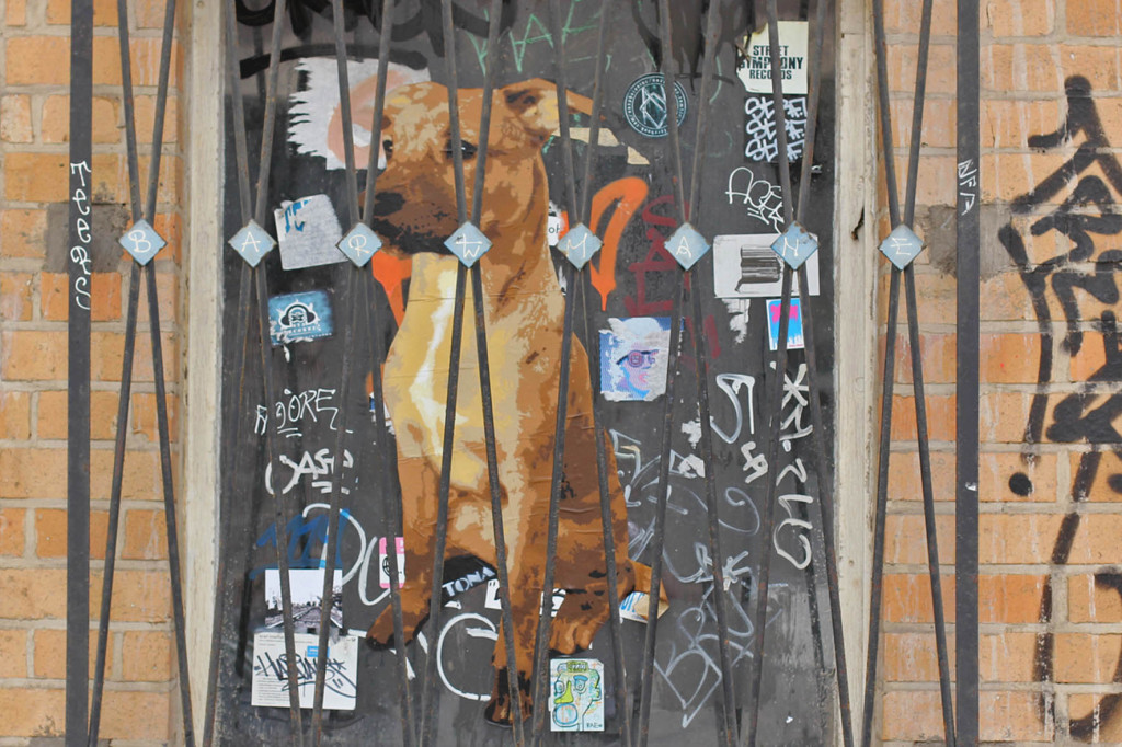 How Much Is That Doggy on the Window? - Street Art by TONA in Berlin