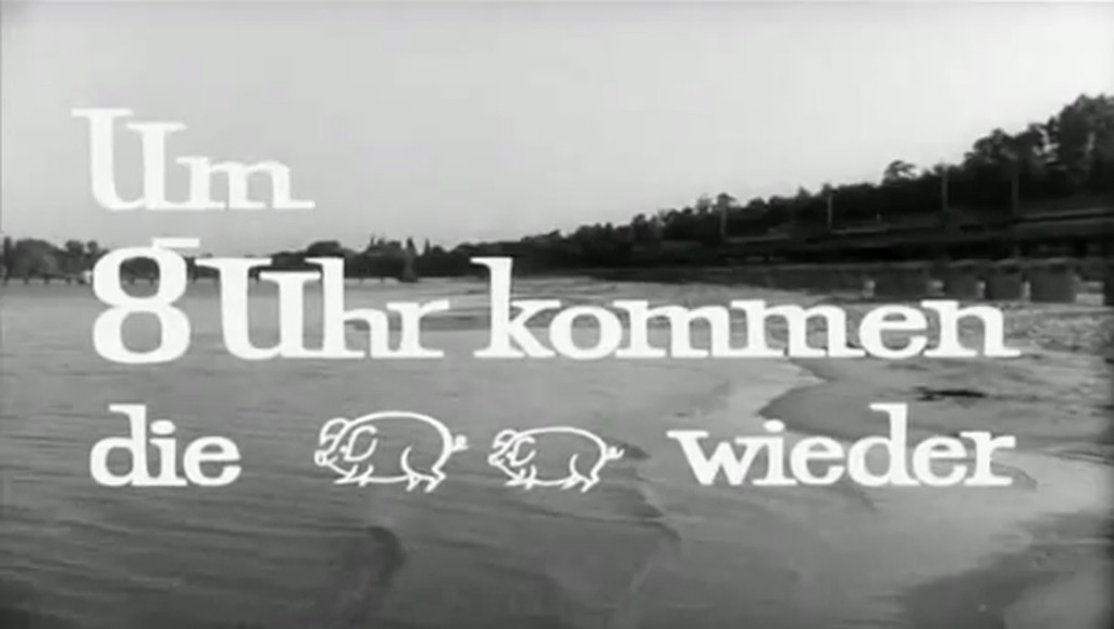 Um 8 Uhr kommen die Schweine wieder Title still