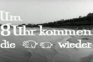 Um 8 Uhr kommen die Schweine wieder – Strandbad Wannsee