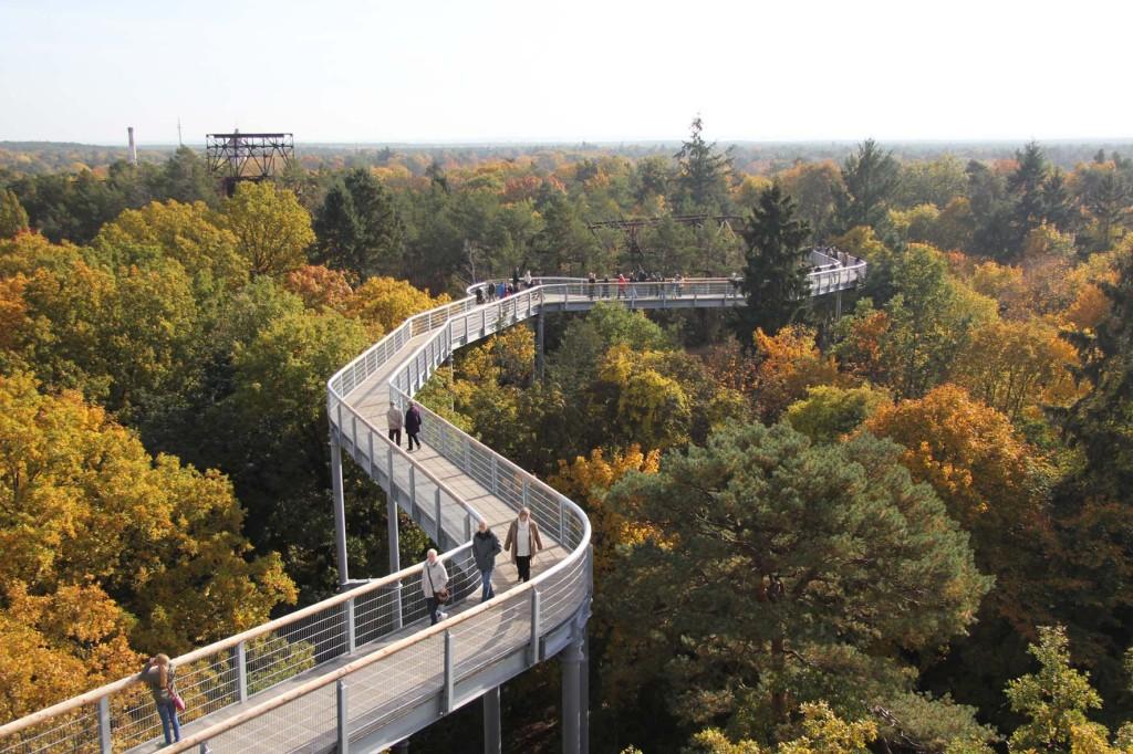 The Treetop Walkway of the Baumkronenpfad Beelitz-Heilstätten near Berlin