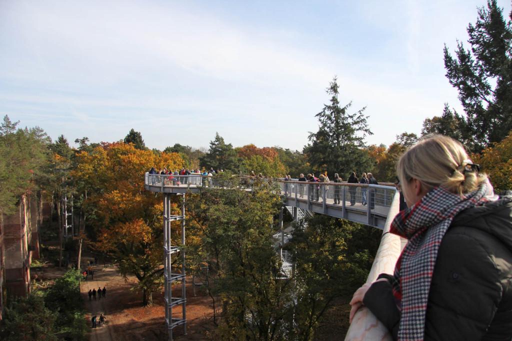 Looking out at the Alpenhaus Ruins and treetop walkway of the Baumkronenpfad Beelitz-Heilstätten near Berlin