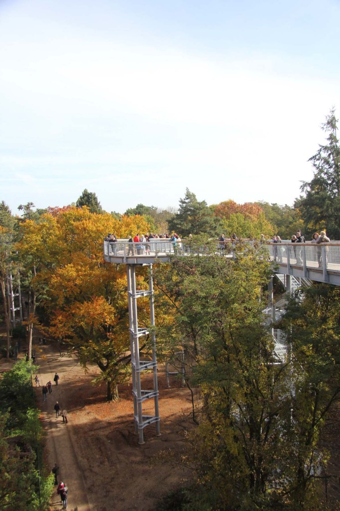 The treetop walkway next to the the Alpenhaus Ruins of the Baumkronenpfad Beelitz-Heilstätten near Berlin