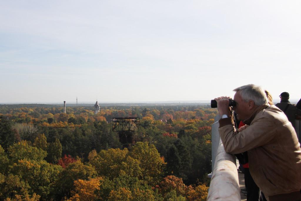 Taking in the view from the treetop walkway of Baumkronenpfad Beelitz-Heilstätten near Berlin