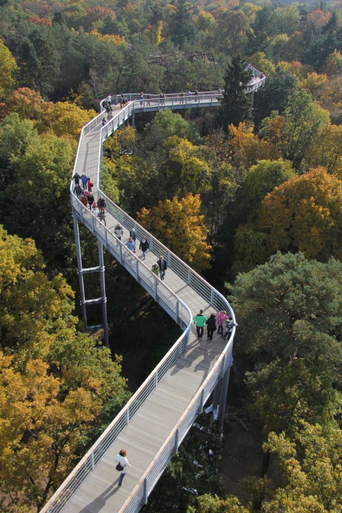The treetop walkway of Baumkronenpfad Beelitz-Heilstätten snaking through the trees near Berlin