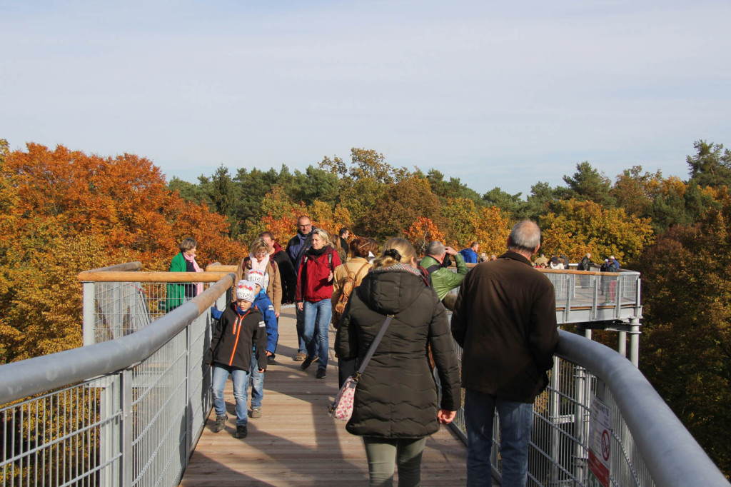 Visitors walking along the treetop walkway of Baumkronenpfad Beelitz-Heilstätten near Berlin
