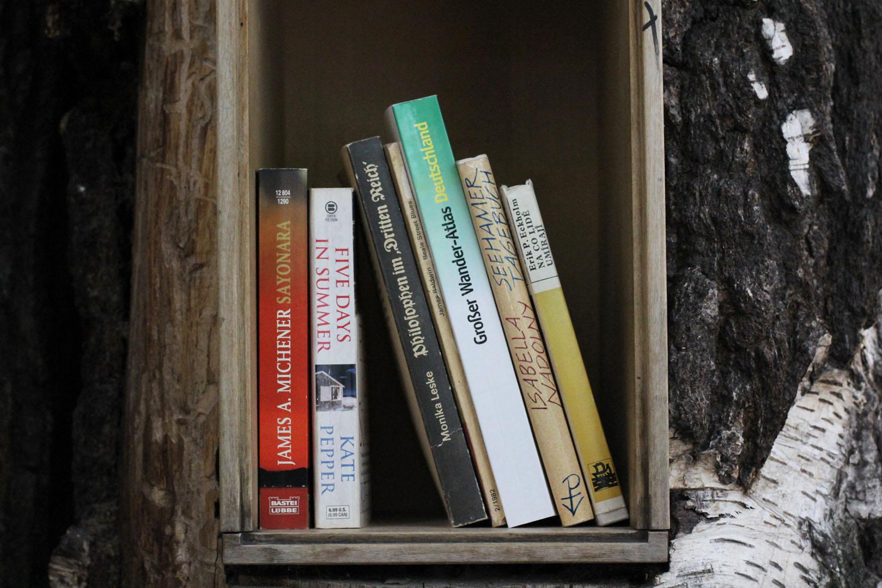 Bücher auf einem Regal im Bücherwald - Eine Bibliothek mit Regalen, die in Stämme geschnitzt sind, die zusammen verschraubt wurden, um einem Baum zu ähneln - auf der Sredzkistrasse in Berlin Prenzlauer Berg