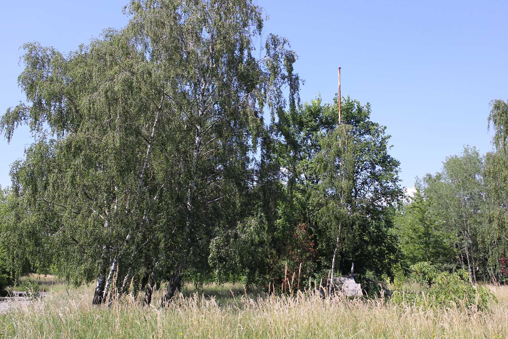 Eine rostige Fahnenstange in der Nähe der Osdorfer Straße Grenze Parks Range und Doughboy City - ein ehemaliger Truppenübungsplatz der US Army Berlin Brigade