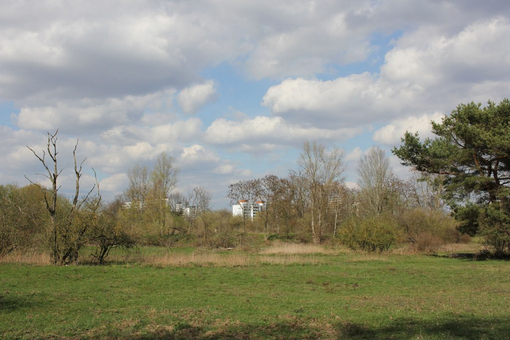 The Thermometer Siedlung in the distance from Parks Range Doughboy City - a former military training ground of the US Army Berlin Brigade