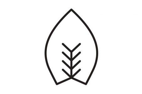 rp_Fuerst-Wiacek-Logo-1024x683.jpg